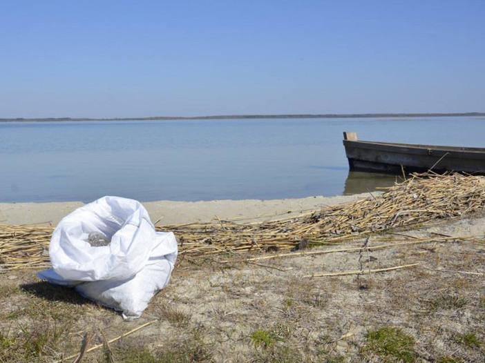 Працівники Шацького НПП прибрали берег озера Світязь