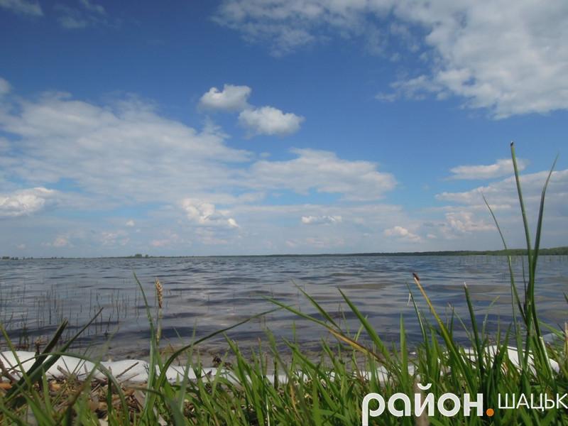 Озеро Люцимер в урочищі «Біля дуба»
