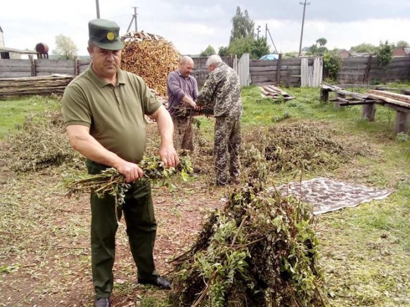 У Шацькому нацпарку заготовляють віники з верби і кропиви