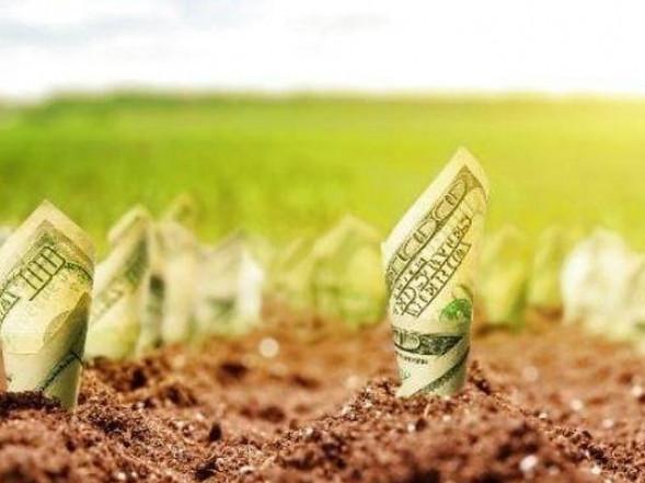 Щоб завершити земельну реформу в Шацькому районі, треба 34 мільйона гривень