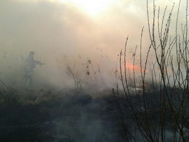 На Шаччині рятувальники ліквідували два осередки загоряння сухої трави