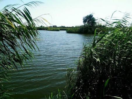 У Піщі рибним господарством займеться прокуратура через незаконне заняття землі та водойми