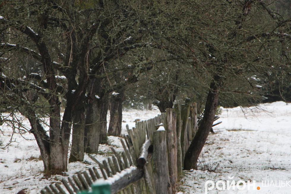 Старенький сад заснув на зиму