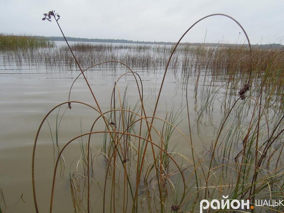 озеро Перемут-Луки
