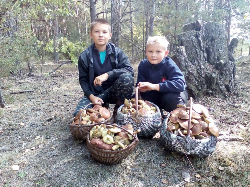 Валентина Марчук пишається своїми грибниками