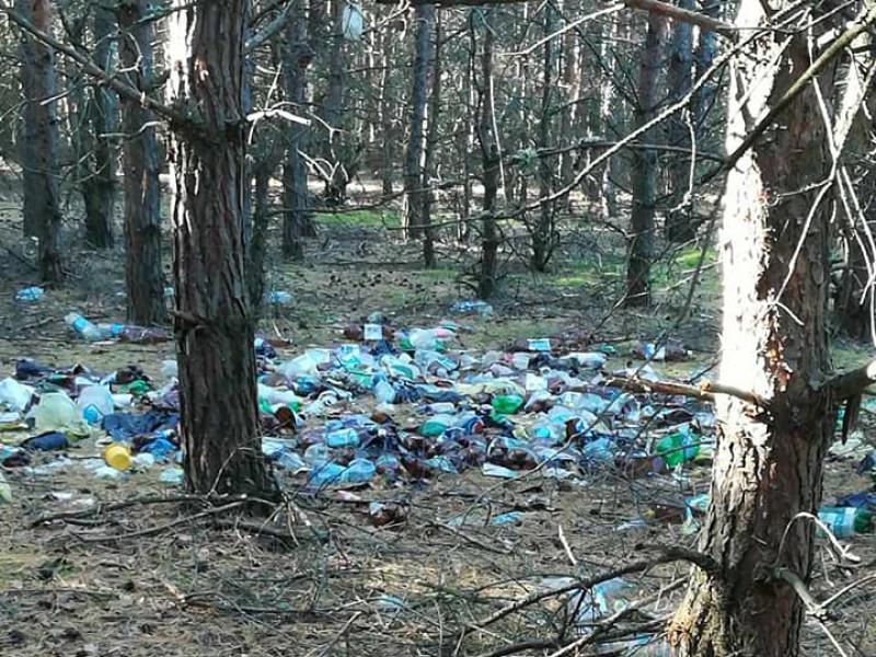 У лісі поблизу Шацька - гори сміття