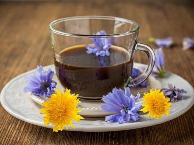 Особливу каву готують у санаторії з коріння цикорію та кульбаби