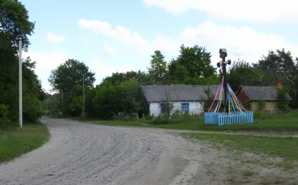 Дорога в селі Адамчуки