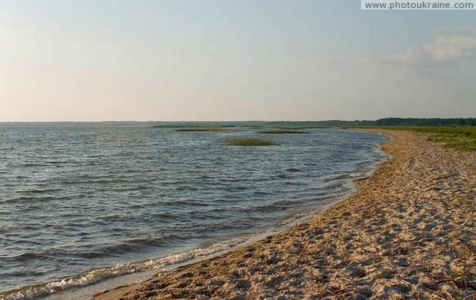 Озеро Пулемецьке - друге за площею після Світязя