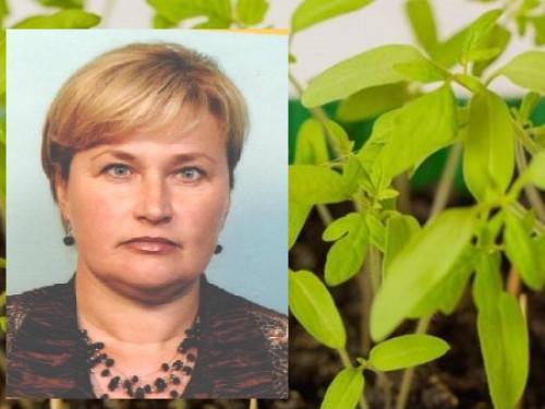 Оксана Шульга понад 20 років займається вирощуванням розсади